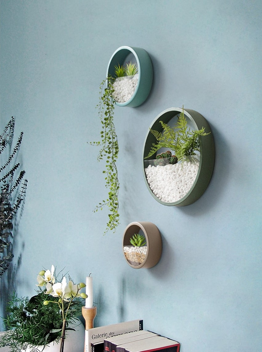 4 Reasons Why You Need These Wall Planters - Apollo Box Blog