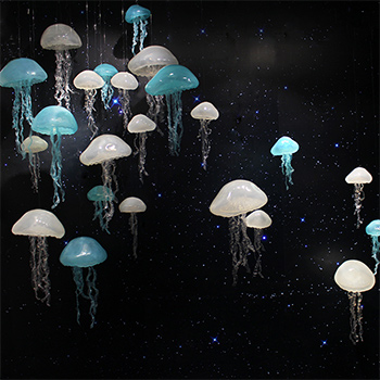 Natural Hanging Jellyfish Decoration