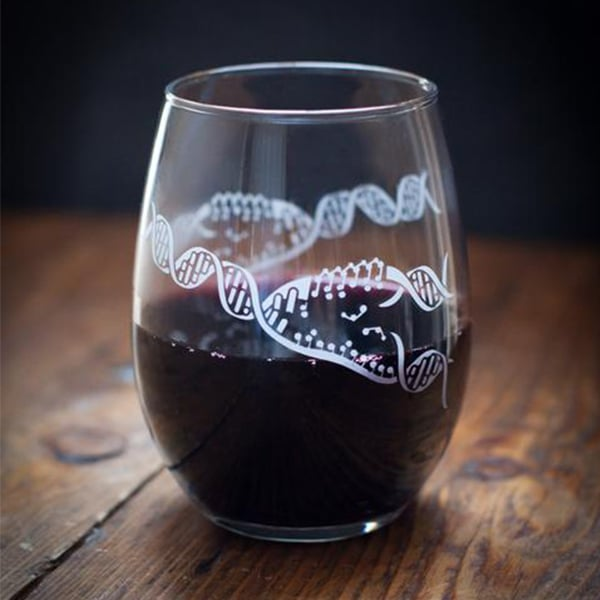 Chemistry Stemless Wine Glass