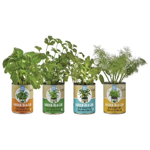 Garden In A Can Set 4 Pack Apollobox