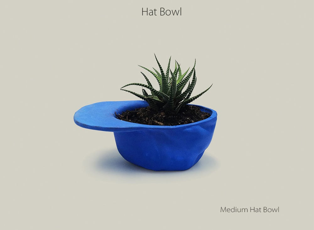 Medium Hat Bowl Plant In This Hat