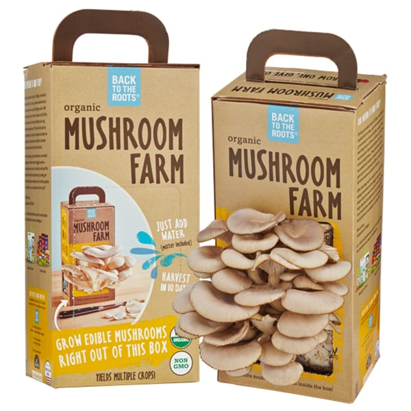 product image for Mushroom Farm