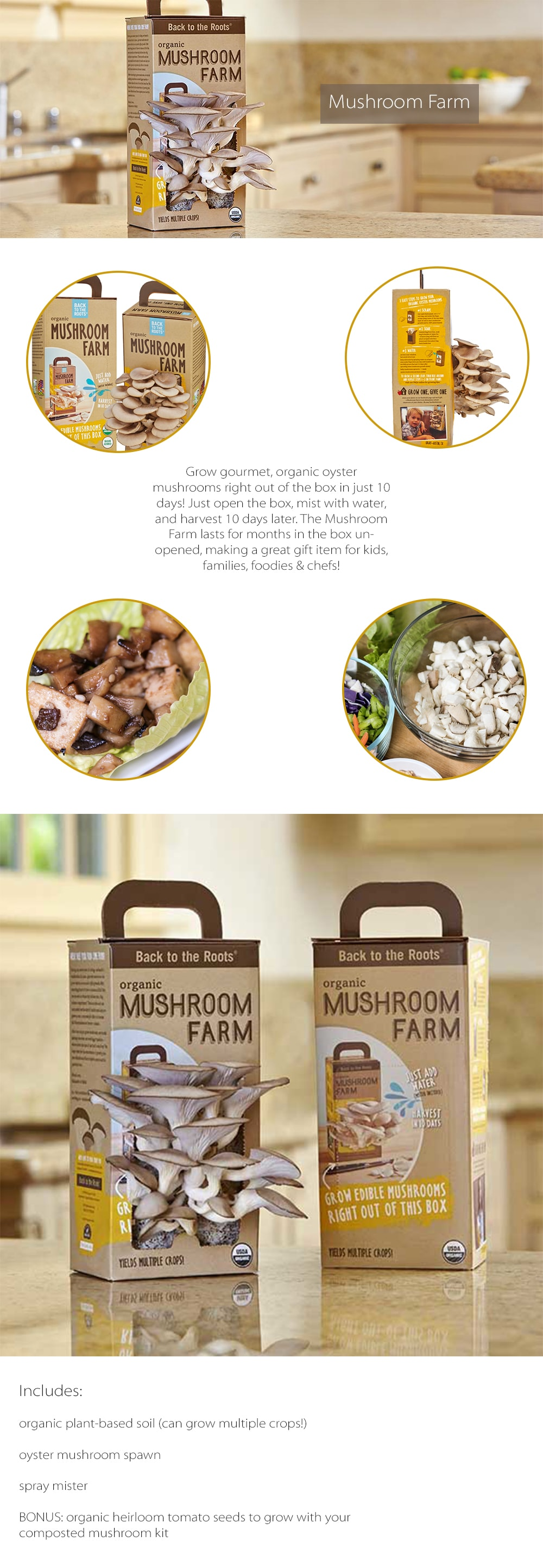 Mushroom Farm Grow Gourmet, Organic Oyster Mushrooms