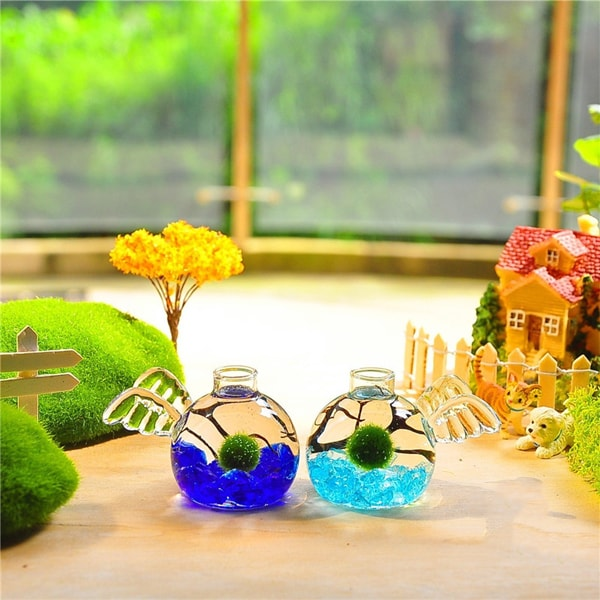 Marimo Angel Aquarium Kit (Set of 2)