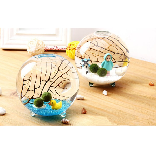 marimo aquarium kit metal stand apollobox. Black Bedroom Furniture Sets. Home Design Ideas