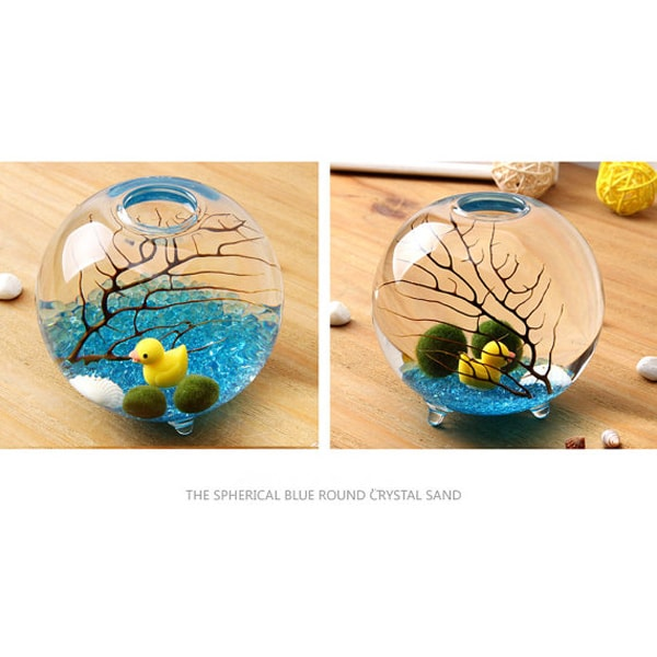 product thumbnail image for Marimo Footed Aqua Terrarium Kit