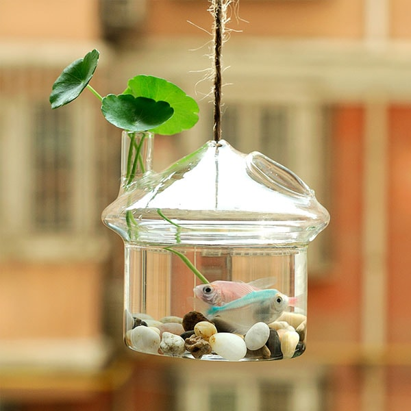 product image for Hanging Fish Tank