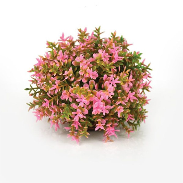 product image for Biorb Plants And Decor