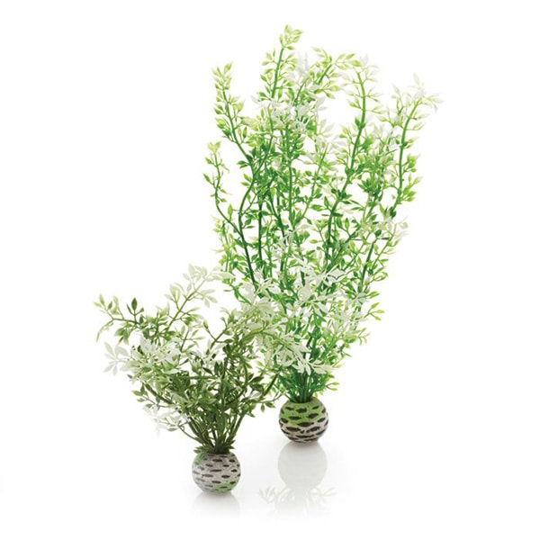 product thumbnail image for Biorb Plants And Decor