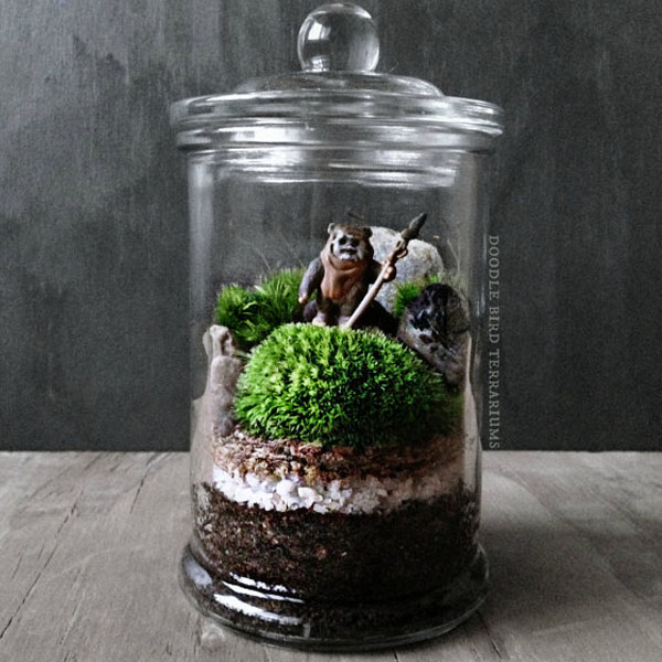product image for Star Wars Terrarium