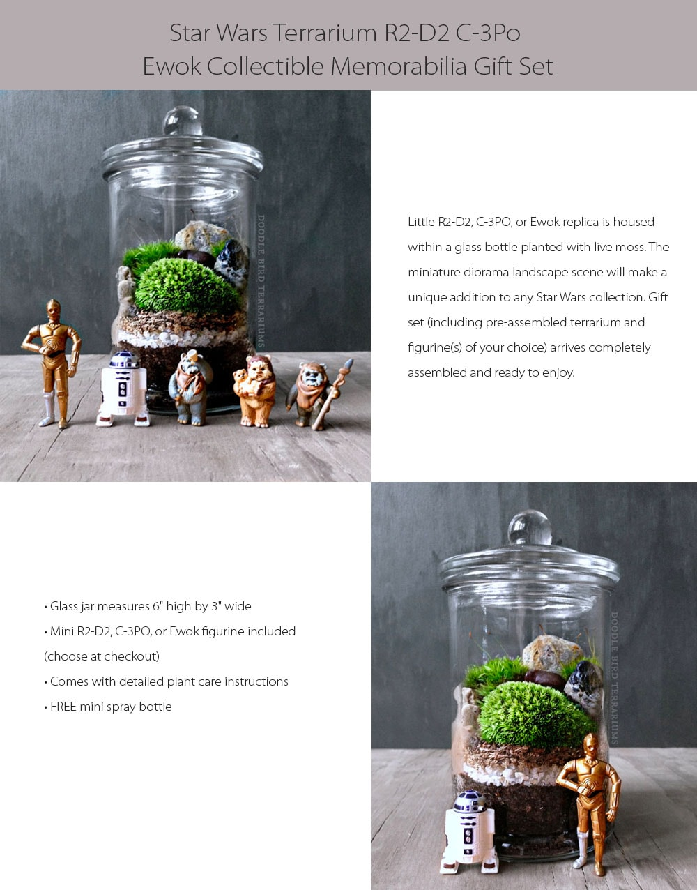 Star Wars Terrarium Creative Vase for Your Desk