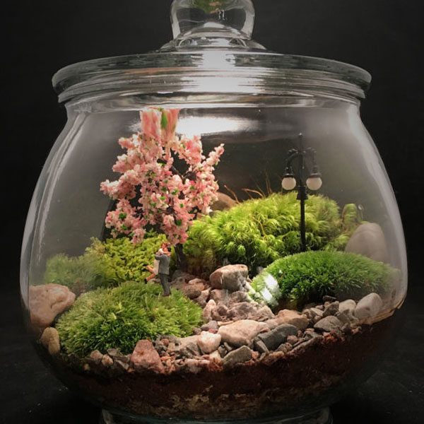 Couple In The Park Terrarium