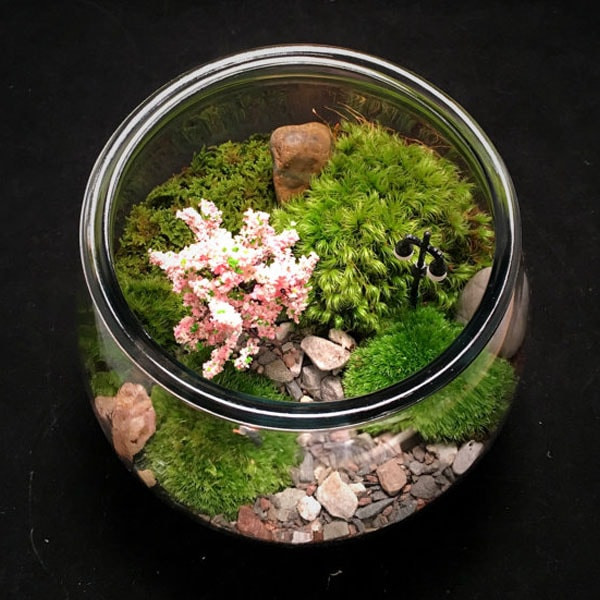 product image for Couple in the Park Terrarium