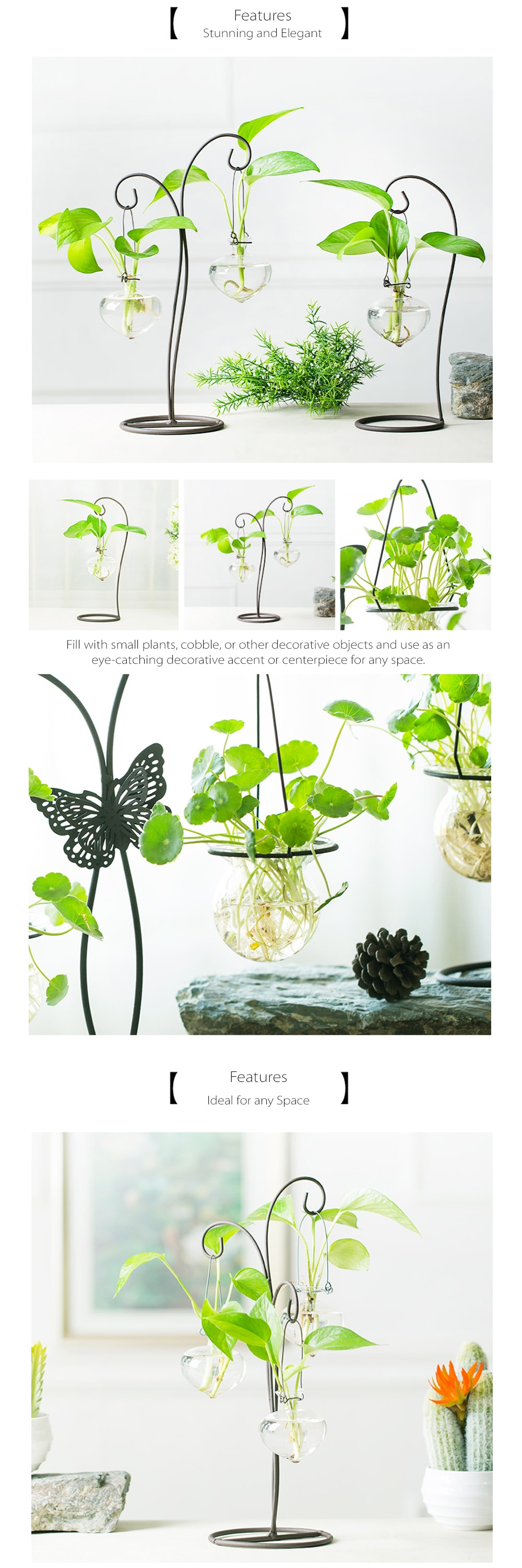 Glass Vase with Butterfly Metal Stand Stylish Hydroponic Vases