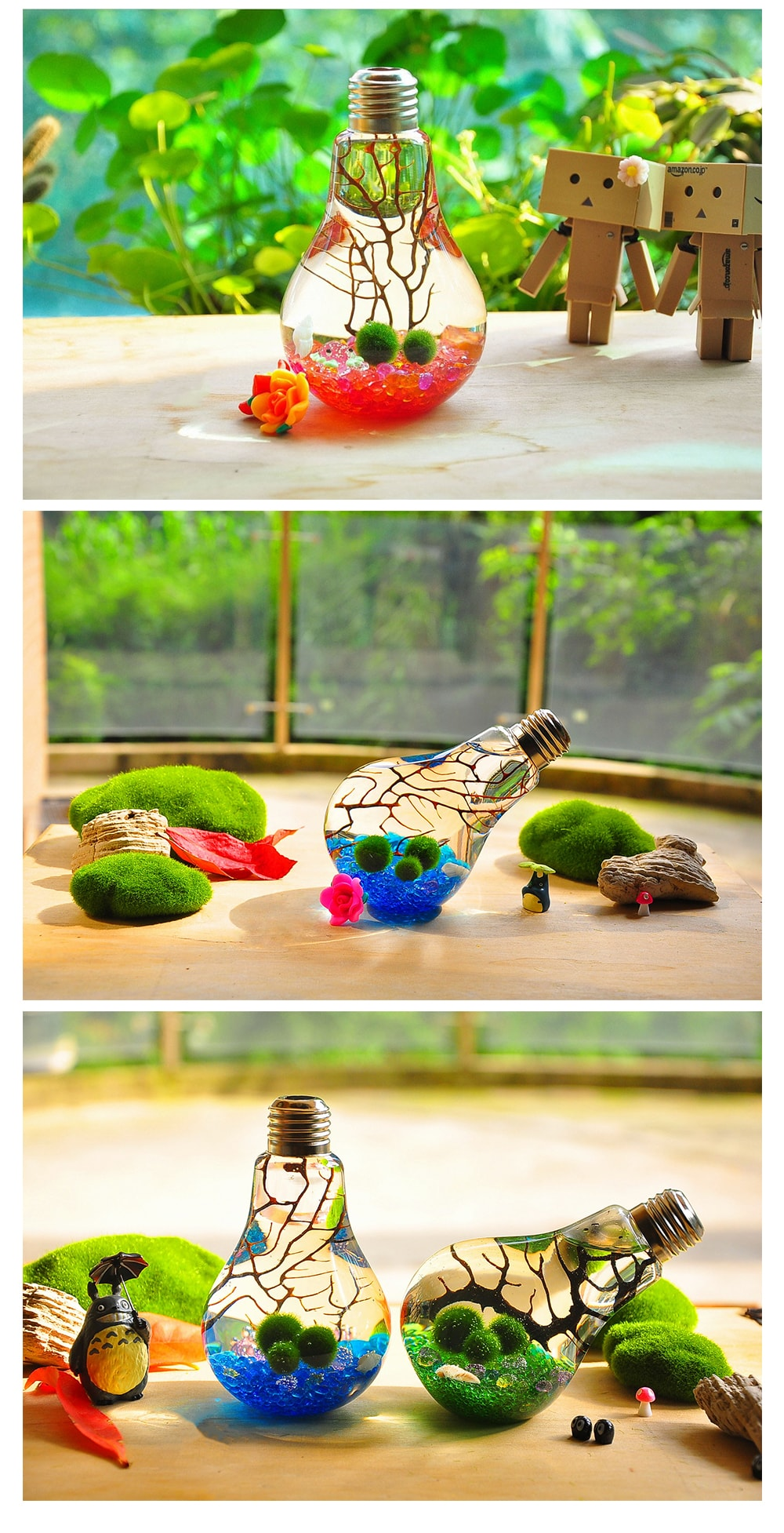 Marimo Bulb Terrarium Bring Zen to the Den