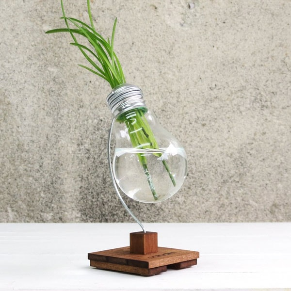Beta upcycled lightbulb vase