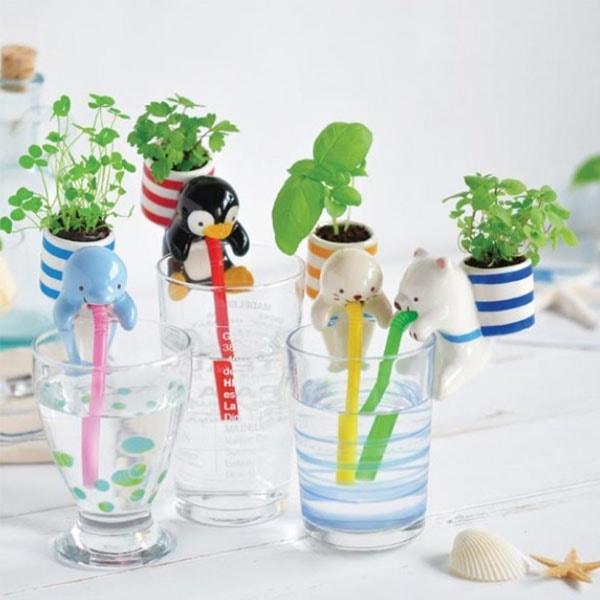product image for Chuppon with Sea Friends