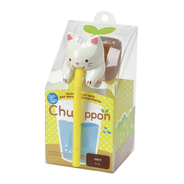 product thumbnail image for Chuppon with Sea Friends
