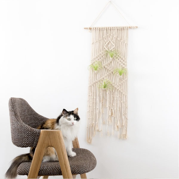 product image for Macrame Plant Tapestry