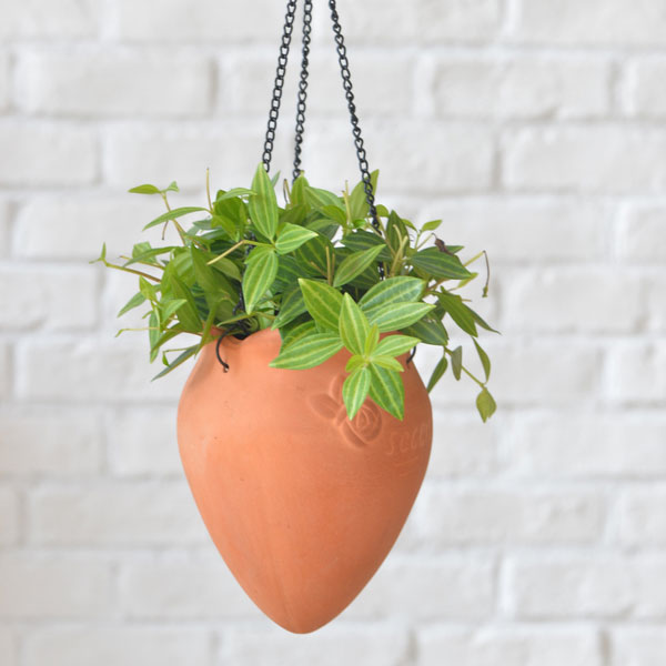 product image for Hanging Rosebud Planter