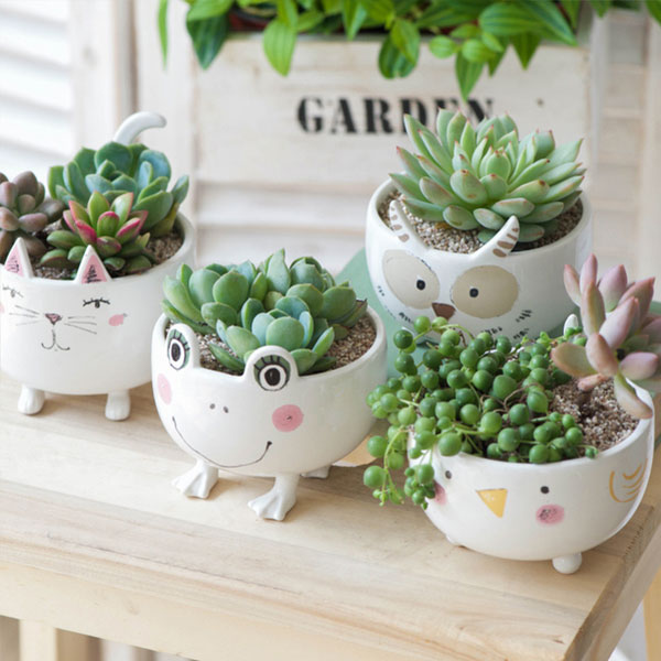 Cute Ceramic Animal Planter