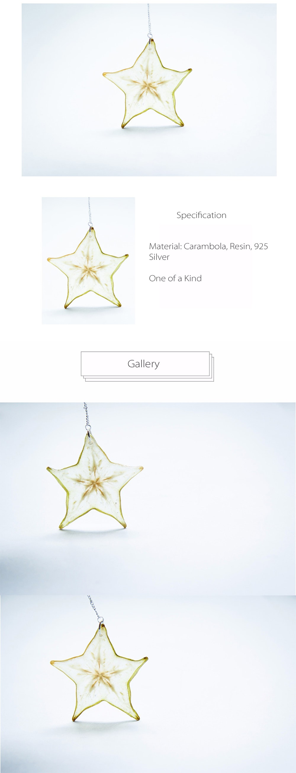 Star Fruit Earring Unique and Cute Design