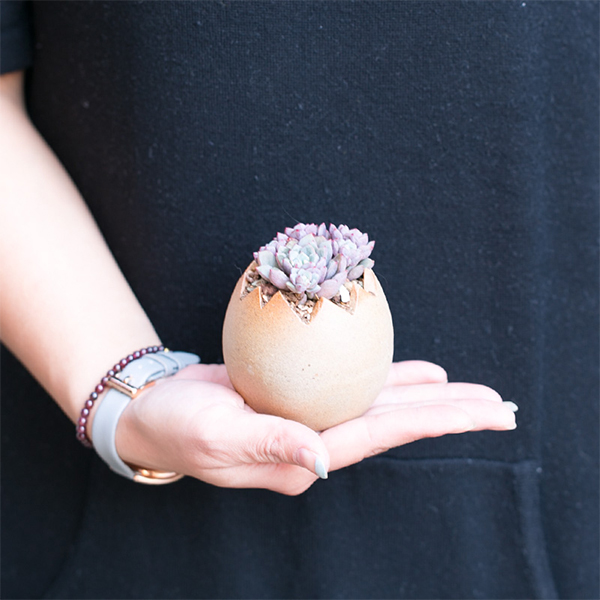 product image for Eggshell Mini Pot
