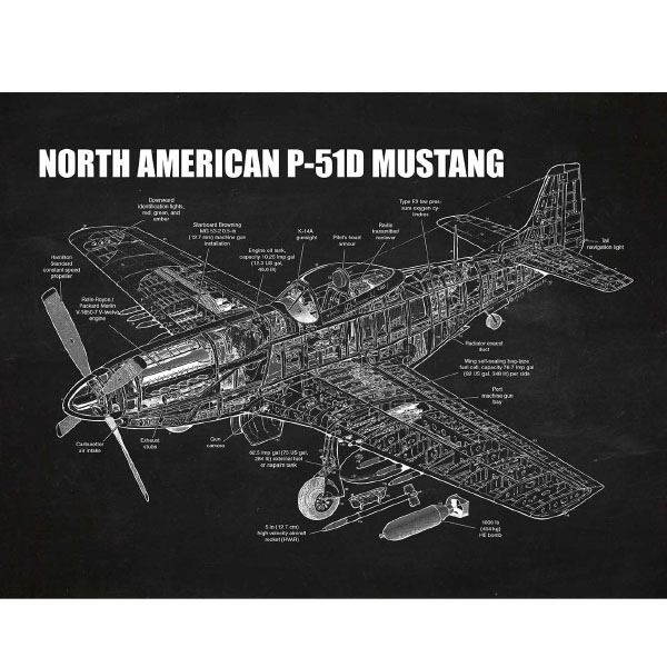 product image for North American P-51D Mustang