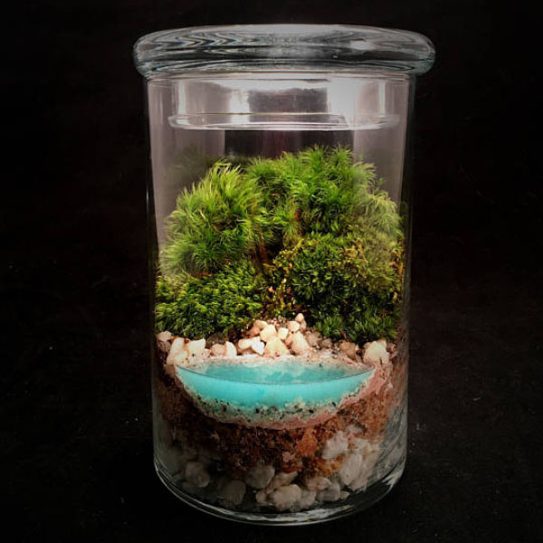 product image for Realistic Water Terrarium