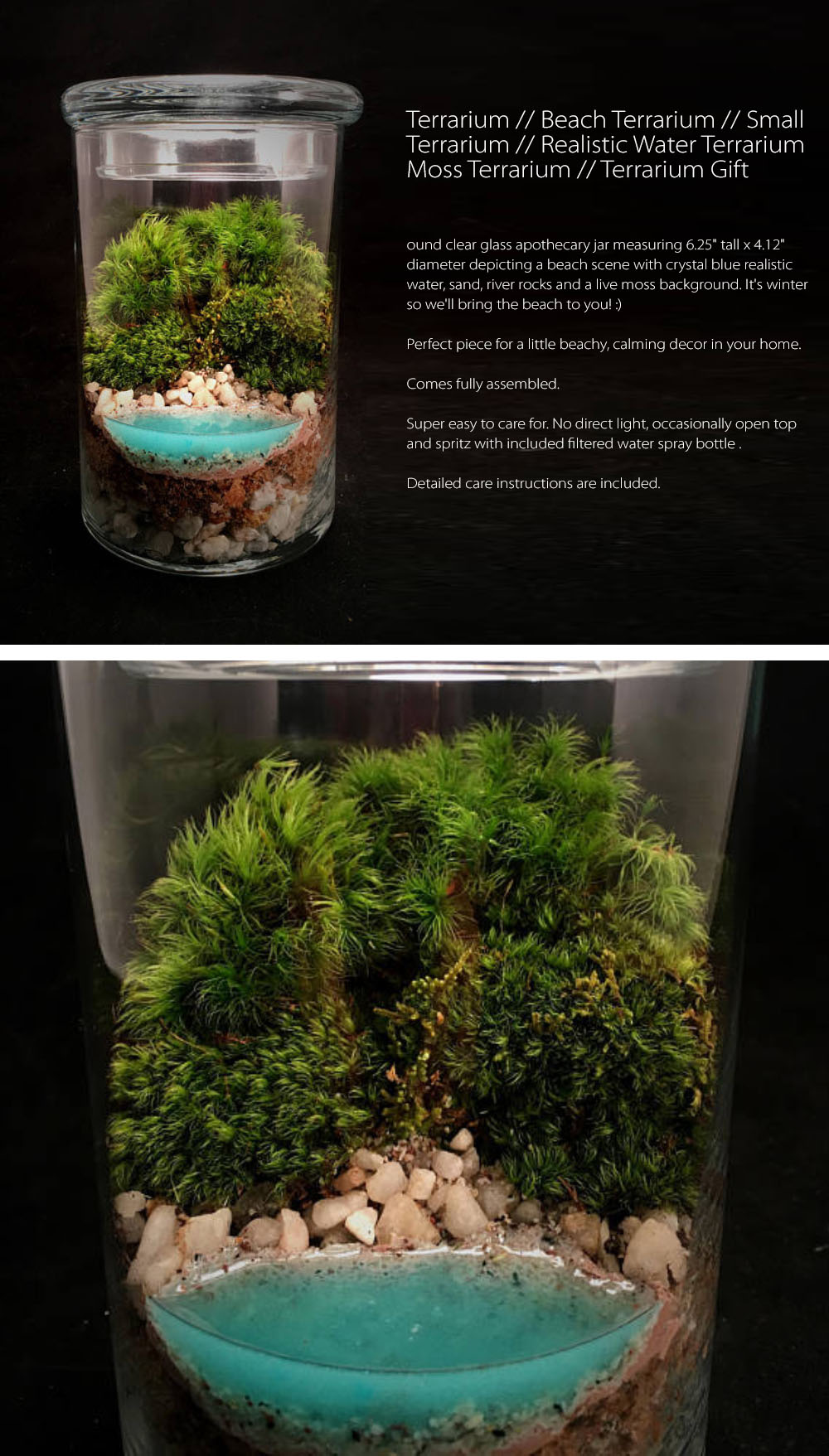 Realistic Water Terrarium  Round clear glass apothecary jar