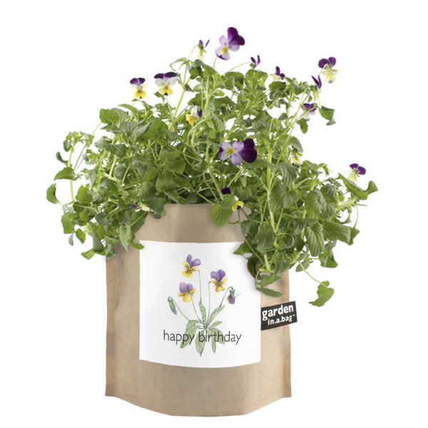 product image for Garden In A Bag