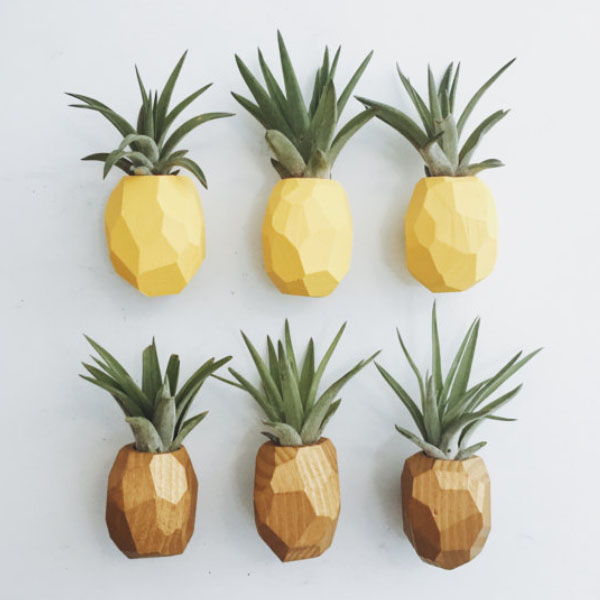 product image for Pineapple Magnet w/Air Plant