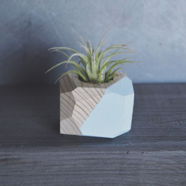 product image for Mini Geo Planter w/Air Plant