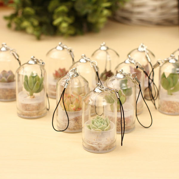 product image for Miniature Plant Keychain