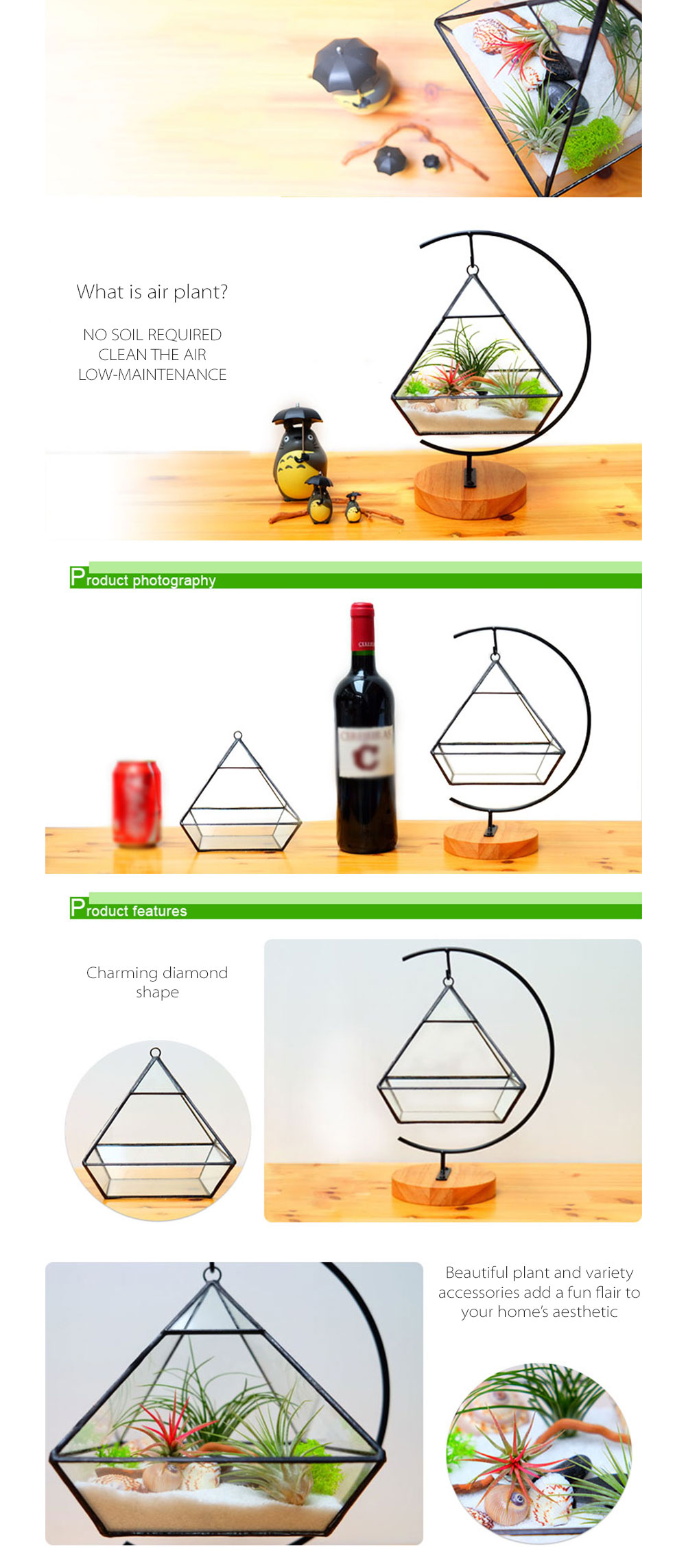 Glass Terrarium Succulent Planter DIY Glass Terrarium Kit