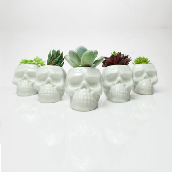 product thumbnail image for Skull Planter