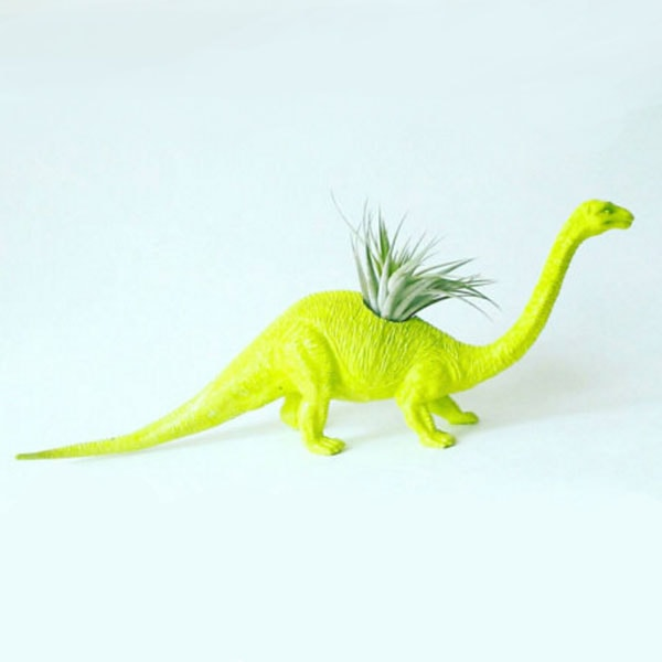 product image for Dinosaur Planter And Air Plant