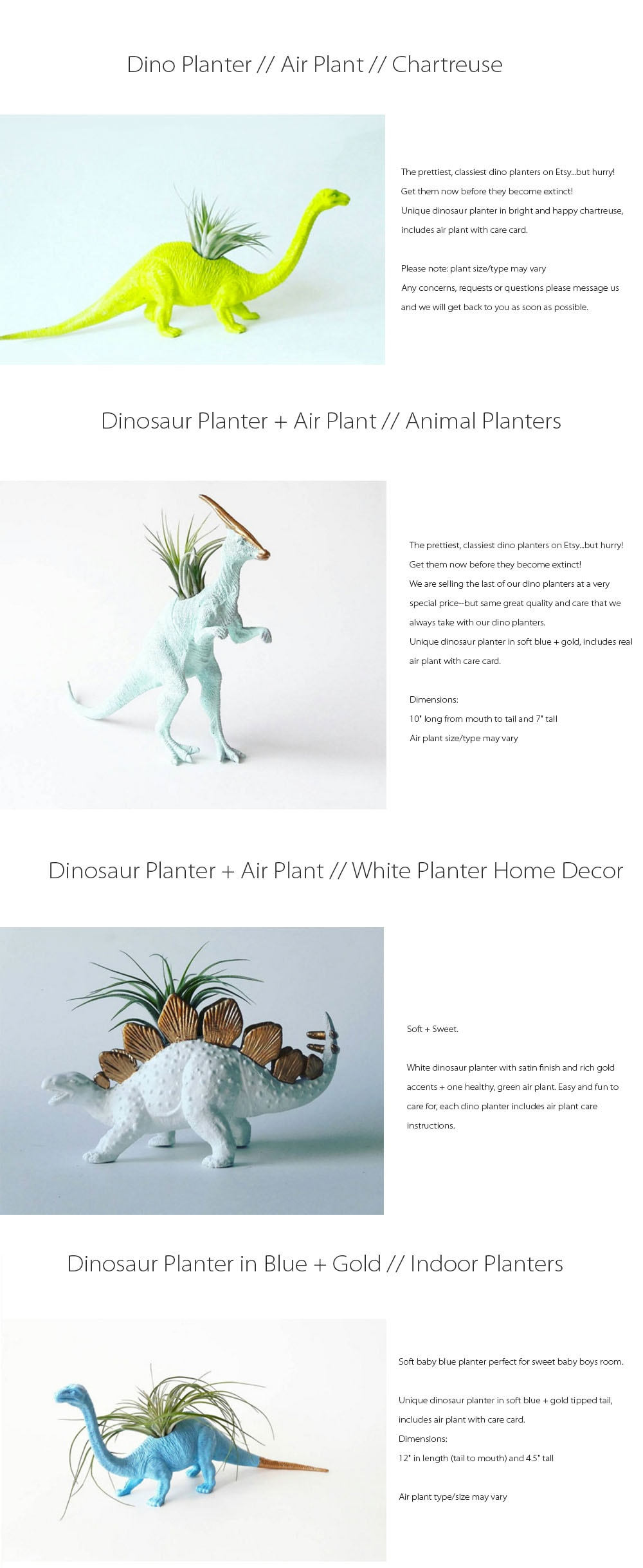 Dinosaur Planter And Air Plant Get Them Now Before They Become Extinct!