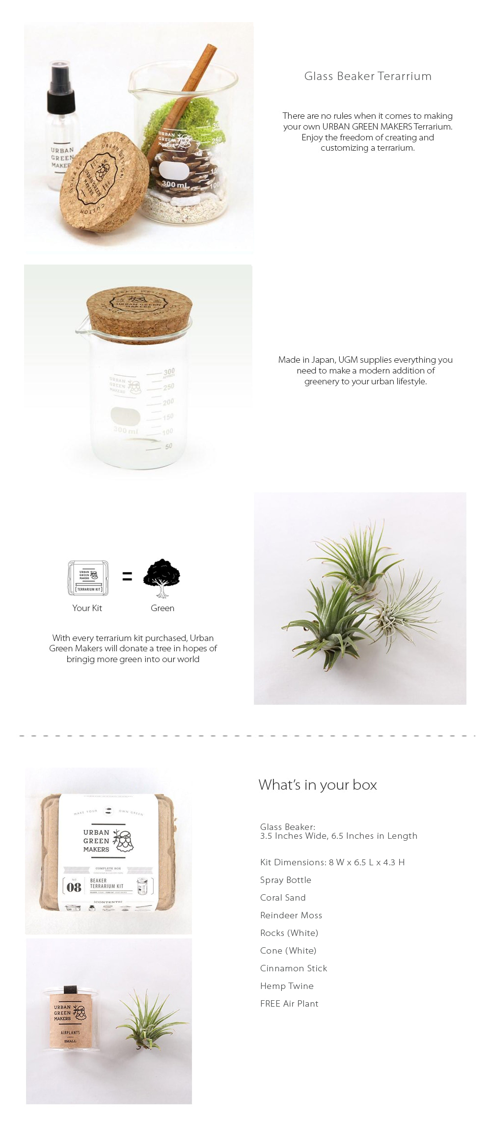 DIY Glass Flask Terrarium Make Your Own Terrarium