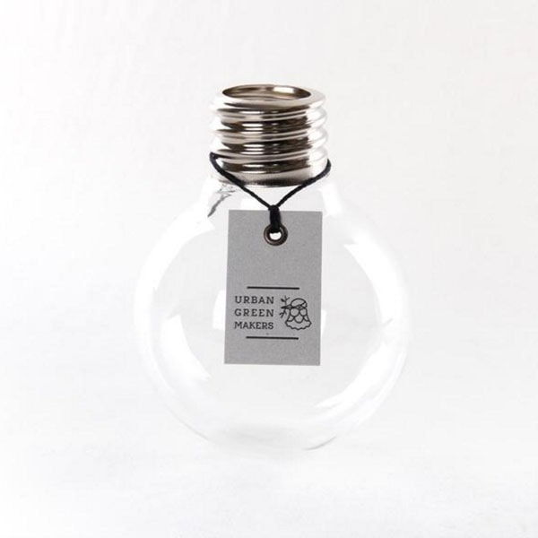 product image for Glass Bulb Terrarium