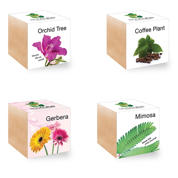 product image for Ecocube