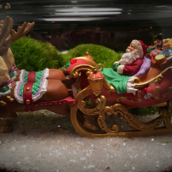product image for Santa On His Sleigh Moss Terrarium