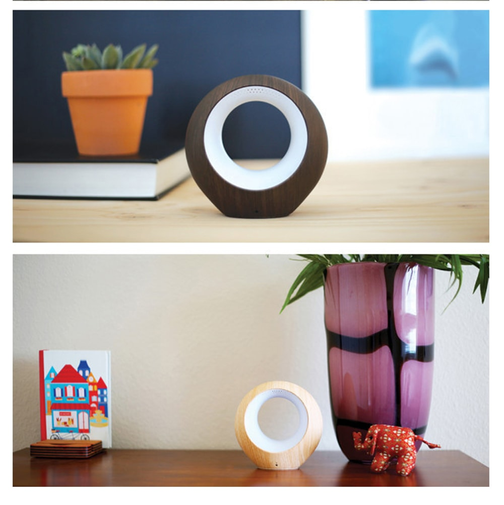 AirSense World's Smallest Air Monitor And Ionic Purifier